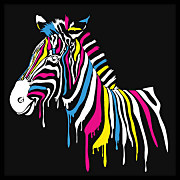Pop Art obraz Zebra zs4536