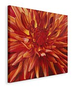 Fabulous Orange Dahlia - Obraz WDC42445