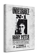 Harry Potter (Undesirable No.1) - Obraz WDC94233