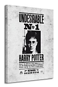 Harry Potter (Undesirable No.1) - Obraz WDC90506