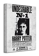 Harry Potter (Undesirable No.1) - Obraz WDC92235