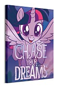 Obraz My Little Pony (Chase Your Dreams) WDC100211