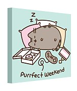 Obraz na plátne - Pusheen (Purrfect Weekend) WDC101023