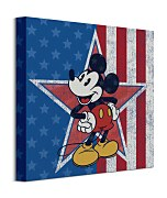 Mickey Mouse American Star - obraz WDC101129