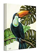 Urban Jungle obraz - Tropical Toucan Brown Louise WDC92896