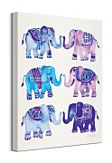 Coquillette Cat - Elephants - obraz WDC94846