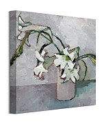 Obraz White Lillies WDC95789