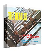 Hudobný foto obraz The Beatles Please Please Me  WDC95851