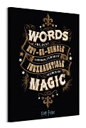 Obraz z filmu Harry Potter Words - obraz WDC99903