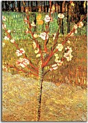 Obrazy Vincent van Gogh - Almond Tree in Blossom zs18375