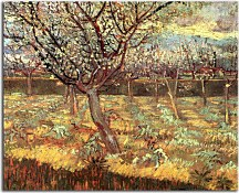 Reprodukcie Vincent van Gogh - Apricot Trees in Blossom zs18376