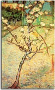 Vincent van Gogh - Pear Tree in Blossom Obraz zs18381
