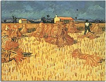 Harvest in Provence zs18398